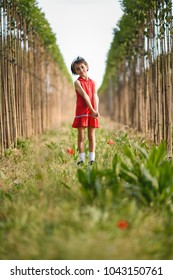 Little girl walking in nature field wearing beautiful red dress
