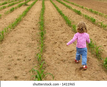 Little girl walking through a vegetable garden
