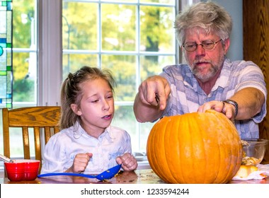 A little girl watches as grandpa makes delicate cuts in the operation of carving a jack o lantern
