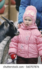 The little girl watchfully and almost scaredly looks at a little goat
