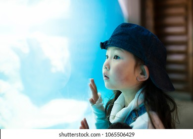 Little girl watching aquarium