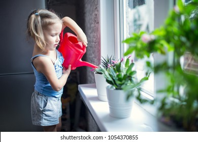 little girl is watering flowers on the window at home
