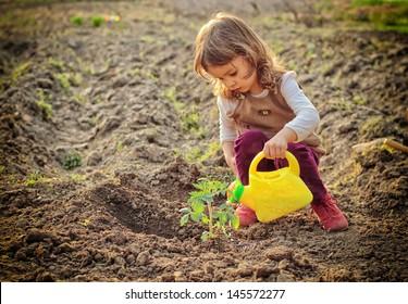 Little girl watering plants in a garden