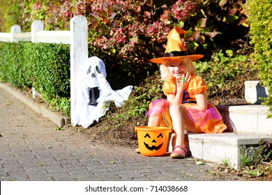 Little girl in witch costume celebrating Halloween. Cute toddler kid having fun. Trick-or-treating for young children.