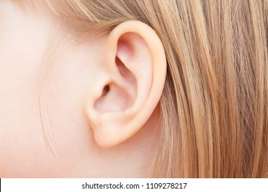 The little girl's ear is close-up. Isolated on white background.