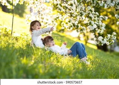 Little girls/sisters hug around the branches of apple blossom, bright, sunny childhood, spring concept