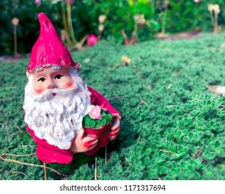 A little gnome found at the Muttart Conservatory garden, located in Edmonton, Alberta, Canada