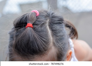 Little girl´s hair with two scrunchies.