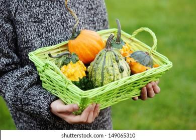 little hands with pumpkin - fall time