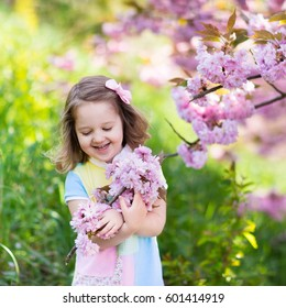 Little happy girl playing under blooming cherry tree with pink flowers. Child holding sakura blossom