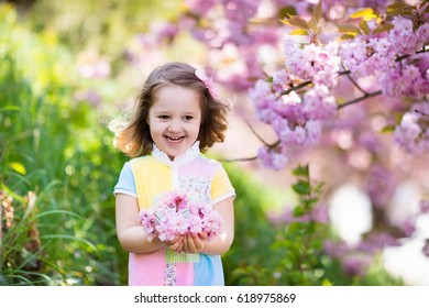 Little happy girl playing under blooming cherry tree with pink flowers. Child holding sakura blossom. Summer fun for family with kids outdoors in a beautiful spring garden. Kid with flower on Easter