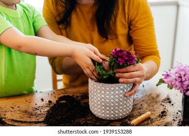 Little helper assists mother while planting flowers at home