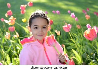Little Hispanic girl in a field of tulips