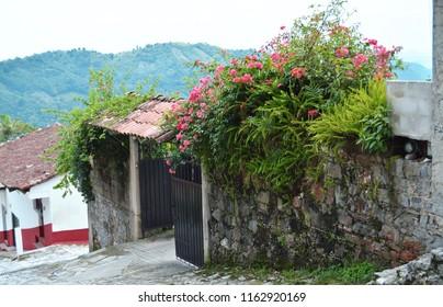 Little home with trees and plants. Cuetzalan Del Progreso, Puebla Mexico.