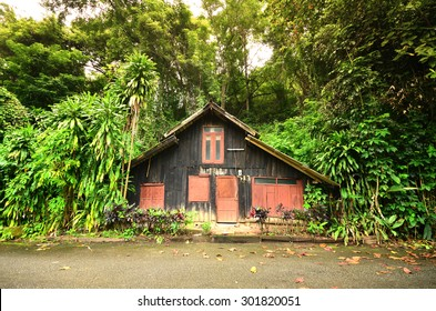 Little house in forest