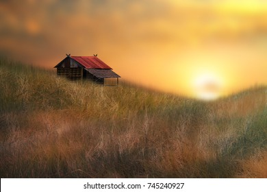 little house on a dream land