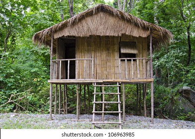 a little hut in the jungle ,