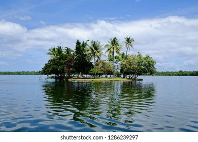 Little island with palms in a Philippines lake