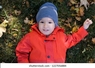 Little kid boy lying in autumn leaves in red coat and grey hat. Happy child having fun in autumn park on warm day.