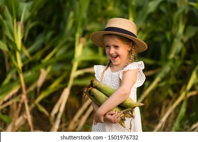 Little kid in a hat standing in the middle of a corn field. Harvest time. organic agriculture for children. Cute child having fun on a sunny summer day outdoor. Sun light. Happy children day concept