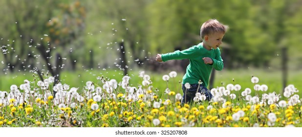 Little kid running in dandelions