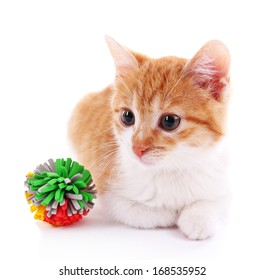 Little kitten with ball isolated on white