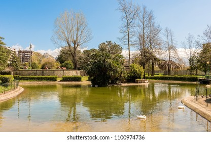 Little lake with ducks in an urban public park. Rende, Cosenza, Italy