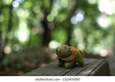 little lost toy in the forest