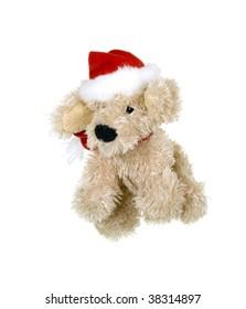 Little Merry Dog Dressed for Christmas Celebration; on white