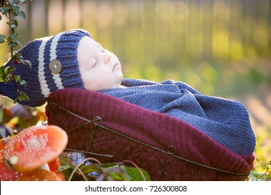 Little newborn baby boy, wrapped in scarf, lying in basket in forest, Amanita Muscaria mushrooms next to him