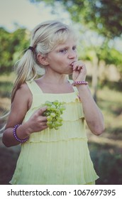 little nice caucasian girl with long blond hair in yellow dress eathing healthy ripe green grapes