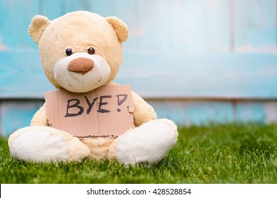 Little old teddy bear sitting on the grass in the garden and holding a piece of cardboard with the information - Bye