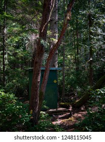 A little outhouse in the woods