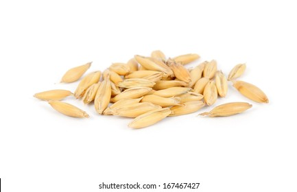 little pile of dry oat seeds, isolated on white