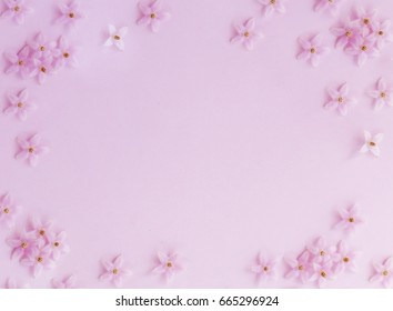 Little pink flower pattern on pink background.