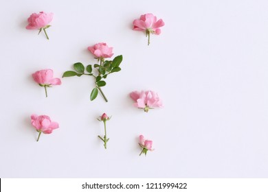 Little pink roses on white wood table.  Gentle romantic background. Floral background. Top view, flat lay. Flowers, spring, summer concept. . Romance and love card concept. Empty space for your text.