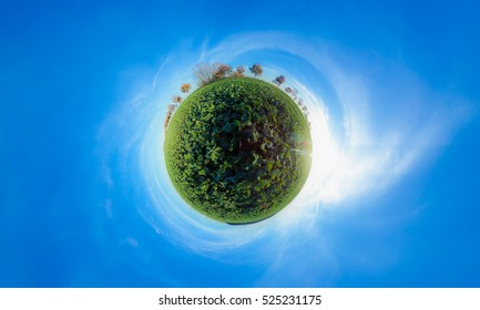 Little planet - spherical view of Agricultural fields with green plants and blue sky in autumn
