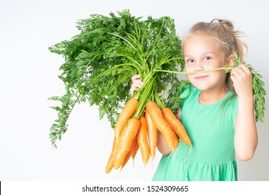Little pretty 6 years old girl with a large armful of carrots with tops. Concept of healthy child nutrition