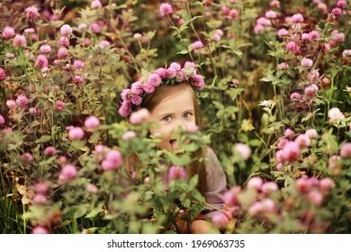 Little pretty girl in a clover field