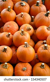 Little pumpkins on display at farm market