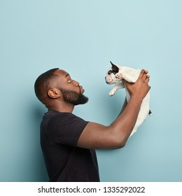 Little puppy finally finds new home. Caring dark skinned man stands sideways, holds small french bulldog, satisfied with habits and food preferences of pet, wants to kiss lovely domestic animal