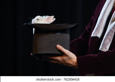 Little rabbit in a magician hat on a black background