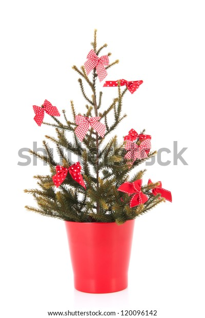 Christmas Tree Bows White.Little Red Christmas Tree Bows Isolated Stock Photo Edit