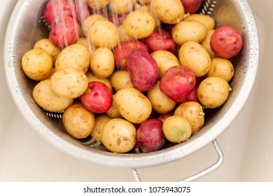 Little red and gold potatoes getting washed in colander.