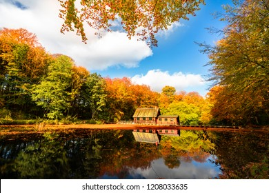 Little red house by a forest lake in the fall with beautiful autumn colors