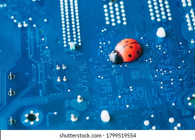 Little red ladybug on a blue motherboard. Concept of computer virus or bug, system failure, problem with technology, software or hardware