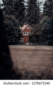 Little red log house in the middle of the dark forest, Portrait