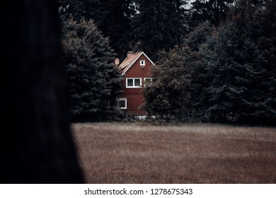 Little red log house in the middle of the dark forest