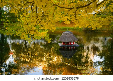 little red round duck house with roof made of reed surrounded by water in a park with beautiful yellow autumn foliage of ginkgo tree in Bremen, Germany