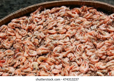 Little red shrimp dried out to be ingredient